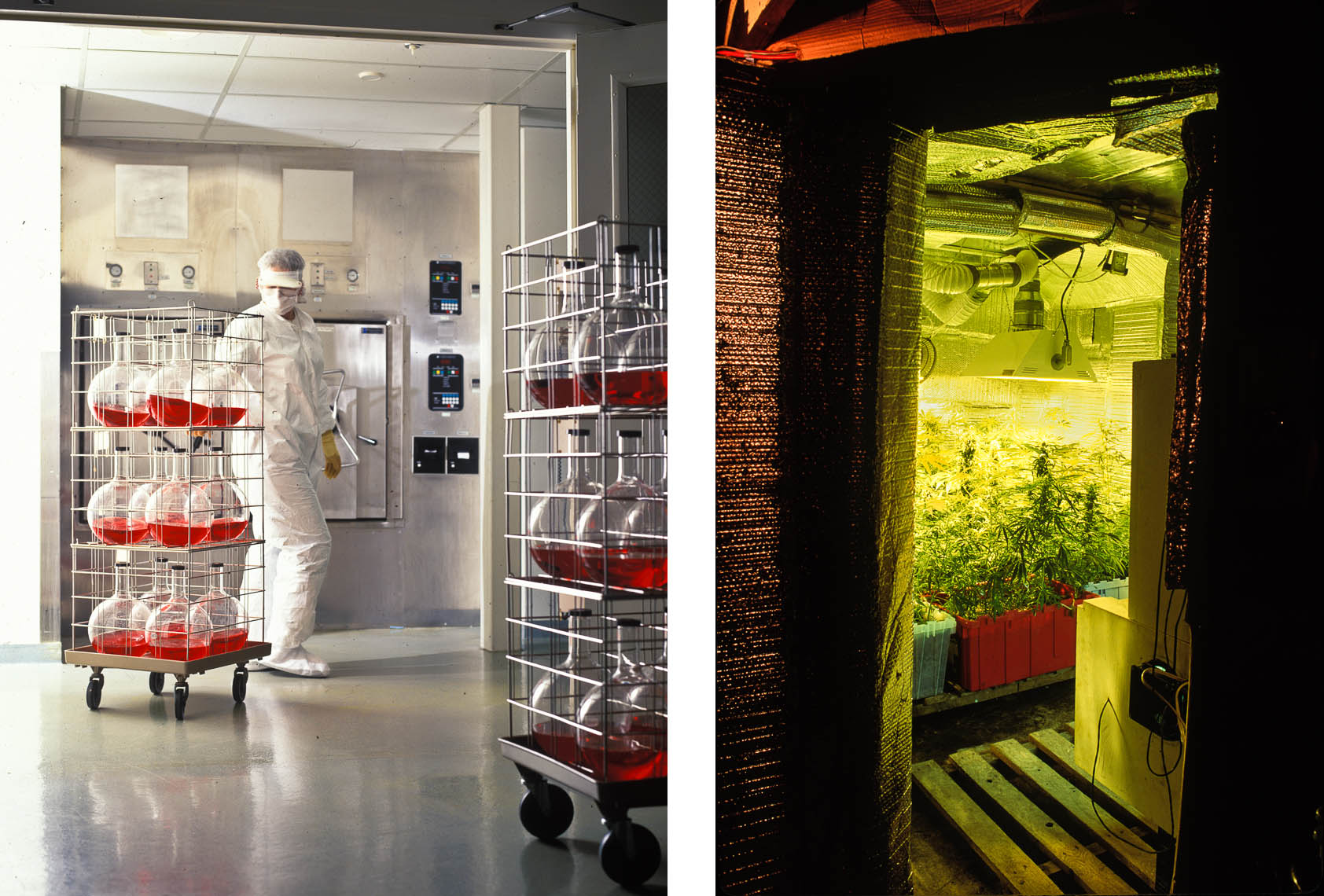 Magazine Photographer in NYC / New Jersey |  Clean Room Grow Room