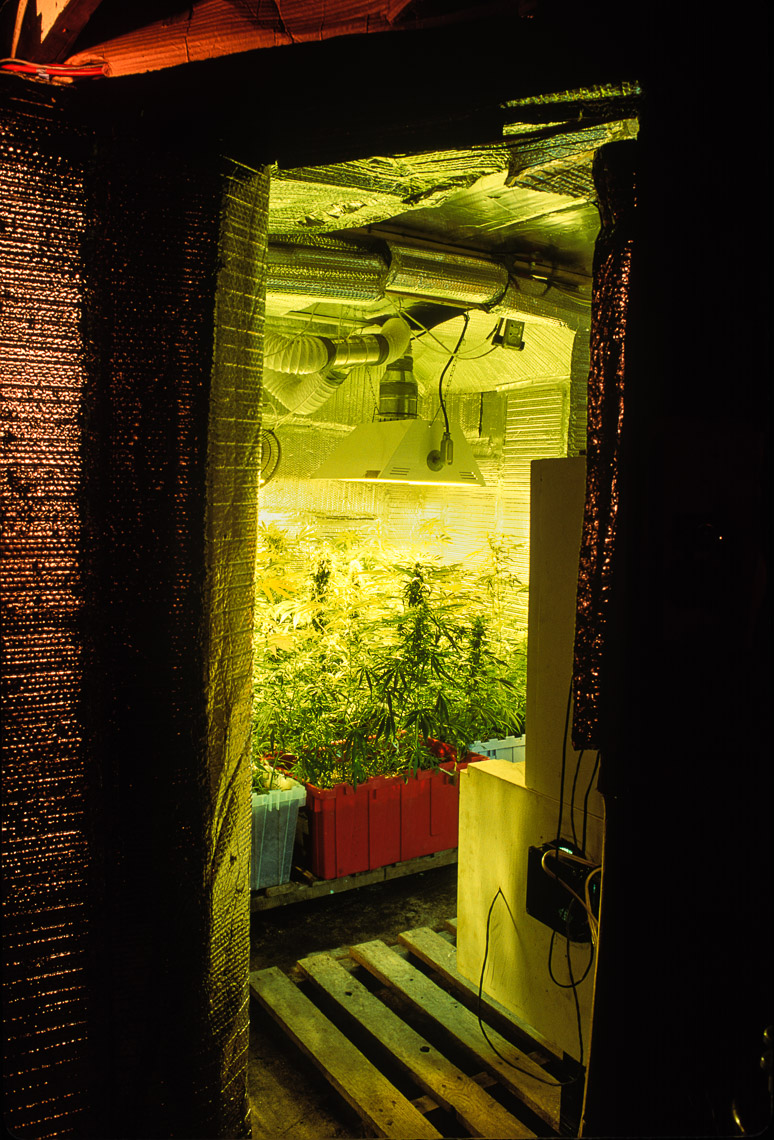 Grow Room NJ | Garden State